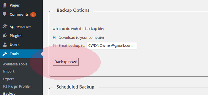 backup-wordpress-site-now